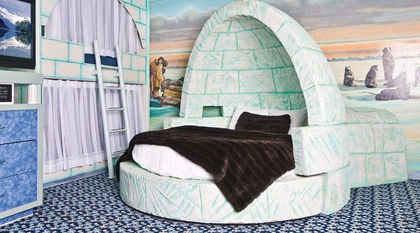 Luxury Igloo Theme Room